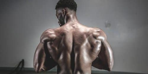 back workouts for strength